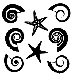 Shells and starfish silhouettes set vector image