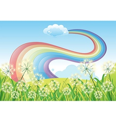 A rainbow in the clear blue sky vector