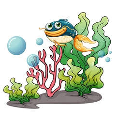 A fish under the sea vector image vector image