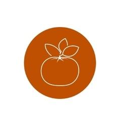 Icon mandarin in the contours vector