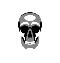 Icon human skull vector image