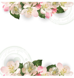 template with flowers apple tree vector image