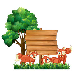 wooden signs with three foxes vector image vector image