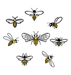Honey bee icons vector