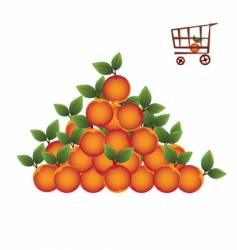 shopping basket with fruit vector image vector image