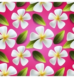 Frangipani flowers seamless pattern vector image vector image