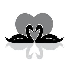 swans black vector image
