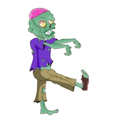 Walking Zombie vector image
