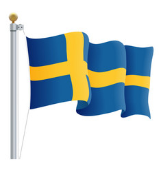 waving sweden flag isolated on a white background vector image vector image