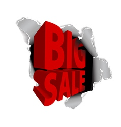 big sale discount vector image vector image
