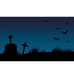 Graves and bat halloween backgrounds vector image vector image