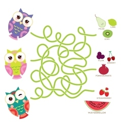 set bright colorful owls with fruits and berries vector image vector image