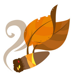 Tobacco leaves and cigar color on the theme of vector