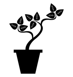 pot with plant vector image