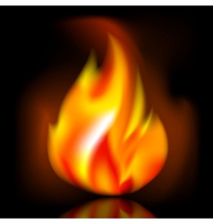 Fire bright flame on dark background vector