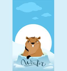 Groundhog day marmot makes forecast winter vector
