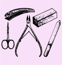 nail scissors manicure nippers vector image