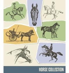 Vintage horse set vector