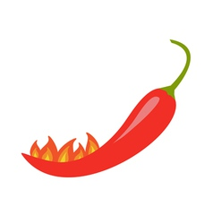 Hot red chili jalapeno pepper with fire isolated vector