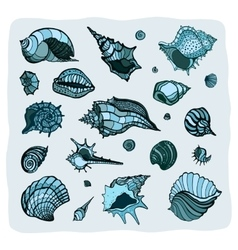 Collection of seashells vector