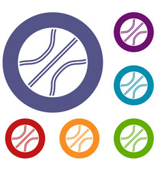 basketball ball icons set vector image vector image