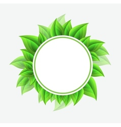 Floral Leaves frame Background vector image vector image