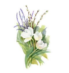 Hand drawn bouquet of flowers isolated on white vector