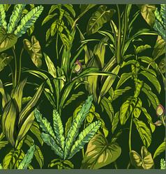 Tropical leaves dense jungle seamless hand vector