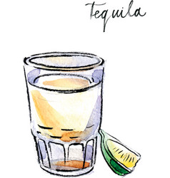 Watercolor tequila with lime vector