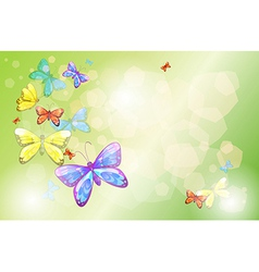 A stationery with colorful butterflies vector image vector image