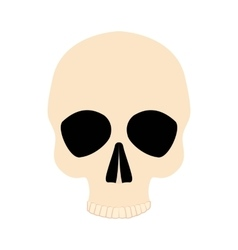 Icon human skull vector image vector image