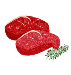 Sirloin steak vector