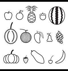 Fruit line icon vector