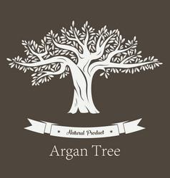 Argan plant or argania flora fruit tree vector