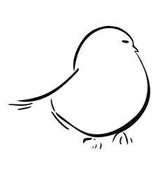 Chick vector