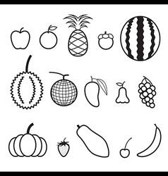 Fruit line icon vector