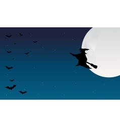 Silhouette of halloween witch and bat vector