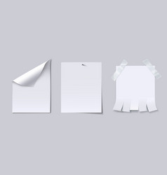 blank paper sheet with page curl attached with vector image vector image