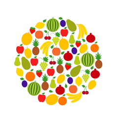 circle of fruits and berries vector image