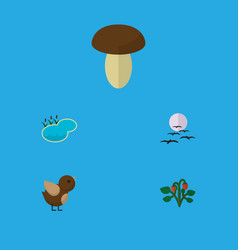Flat icon nature set of champignon bird gull and vector