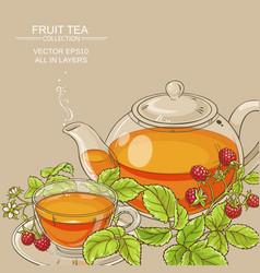 raspberry tea background vector image