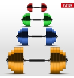 Multicolor classic power dumbbells vector