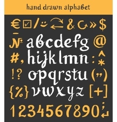 Hand drawn alphabet and letters numbers brush vector