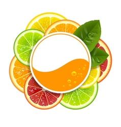 Round banner with citrus fruits vector