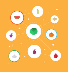 Flat icons cauliflower pumpkin garlic and other vector