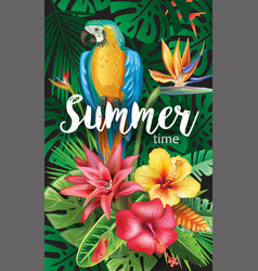 parrot with tropical and flowers vector image