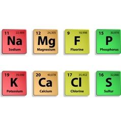 Major dietary elements vector
