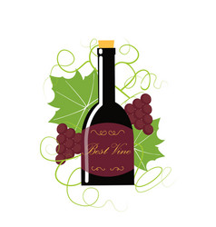 Grape berry leaf behind vine bottle vector