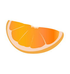 Isolated orange cut vector