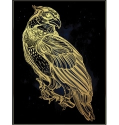 Detailed hand drawn bird of prey vector image